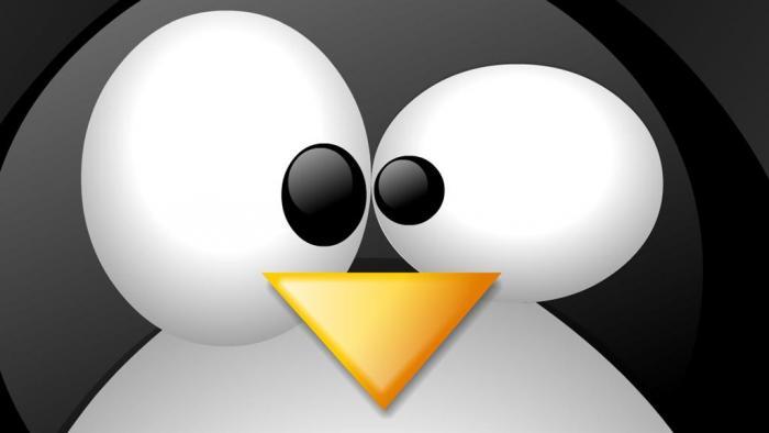 Vulnerabilidades críticas no kernel do Linux afetam 8 milhões de serviços