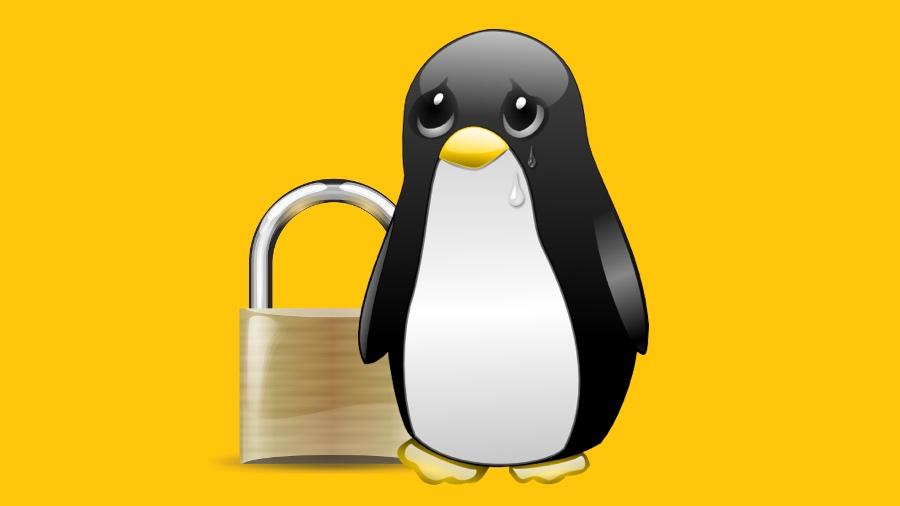 Kernel do Linux anterior à versão 5.0.8 é vulnerável à execução remota de código
